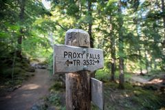 Proxy Falls Loop Trail Sign. Alongside trail in summer forest Stock Image