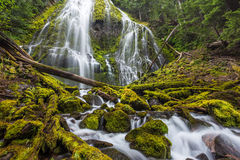 Proxy Falls trail in Oregon national forest Royalty Free Stock Images