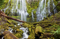 Proxy waterfall cascading over mossy rocks at sunset. Proxy waterfall cascading over tiered layers of mossy rocks in Willamette National Park in Central Oregon stock photos