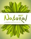 100-Prozent-natürliche Karte mit den frischen grünen Blättern, Ba annoncierend lizenzfreie abbildung