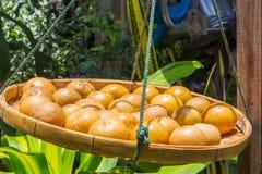 prserved citroner royaltyfri foto