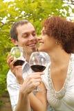 Prueba de vino imágenes de archivo libres de regalías