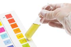 Prueba del pH Foto de archivo libre de regalías