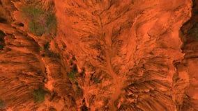 Pruebas de la vida en el planeta rojo Marte Planta verde que crece en los alrededores rojos del barranco Fondo micro inclinable a almacen de video