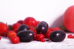 Prugna e mirtillo rosso neri di Java fotografia stock libera da diritti