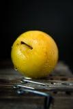 Prugna gialla con le gocce di acqua sulle mollette da bucato di legno fotografie stock
