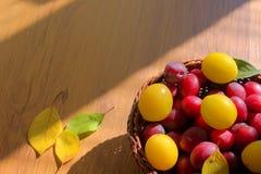 Prugna gialla e rossa del miele Fotografie Stock Libere da Diritti