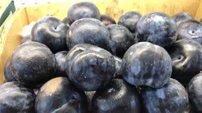 Prugna organica fresca nel supermercato Prugna nel deposito archivi video