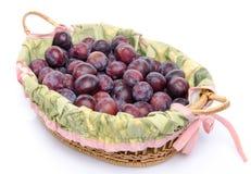 Prugne blu mature fresche in un canestro Immagine Stock