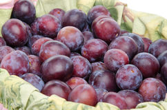 Prugne blu mature fresche in un canestro Fotografia Stock Libera da Diritti