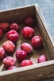 Prugne delle varietà differenti in una scatola di legno Fotografie Stock