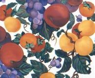 Prugne dipinte a mano dell'uva delle albicocche dell'acquerello della frutta Fotografie Stock