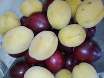 Prugne ed albicocche Fotografie Stock