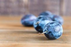Prugne fresche delle prugne blu del raccolto di Plum Fresh Plum Harvest Autumn su uno spazio di legno della copia del fondo Immagine Stock Libera da Diritti