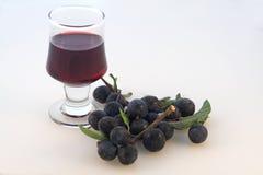 Prugnole & gin di prugnola Fotografie Stock