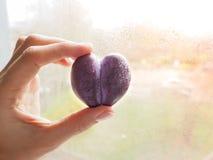 Pruim in de vorm van hart fruit van liefde Pruim in de vorm van een ezel Unieke pruim Royalty-vrije Stock Fotografie