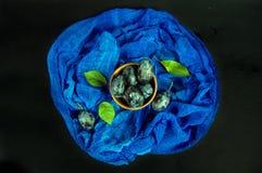Pruimen en groene bladeren op een blauwe en donkere achtergrond stock foto