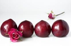 Pruimen en rozen Stock Foto's