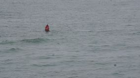 Prumos vermelhos da boia de freira 20 em águas agitados filme
