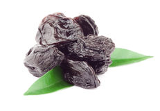 Prune Royalty Free Stock Photos