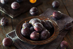 Prune Plums pourpre mûre organique Image stock