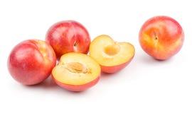 Prune rouge fraîche d'isolement sur le blanc Photographie stock