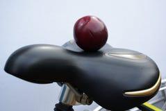 Prune on a saddle Stock Photo