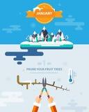 PRUNE YOUR FRUIT TREES Stock Photos
