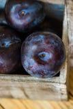 Pruneaux organiques mûrs de rouge dans la boîte en bois de jardin, vue supérieure, fin, couleurs vibrantes, style rustique, l'esp Photographie stock libre de droits