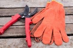 Pruner auf Gartenhandschuhen Stockfoto