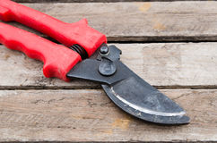 Pruner Stock Photo