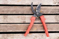 Pruner i ogrodowe rękawiczki Zdjęcia Stock