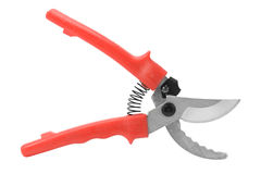 Pruner Stock Photography