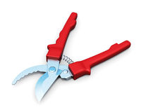 Pruner  on a white background. 3d rendering Royalty Free Stock Photography