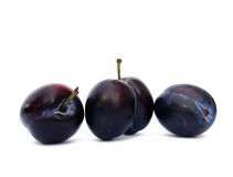 Prunes Stock Image