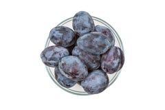 Prunes bleues dans une cuvette transparente, vue supérieure Images libres de droits