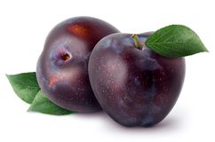 Prunes d'isolement Deux fruits entiers de prune avec des feuilles d'isolement sur le fond blanc, avec le chemin de coupure Photo stock