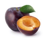 Prunes d'isolement La totalité et une moitié de prune bleue portent des fruits avec des feuilles d'isolement sur le fond blanc, a Image stock