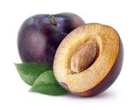 Prunes d'isolement La totalité et une moitié de prune bleue portent des fruits avec des feuilles d'isolement sur le fond blanc, a Photographie stock