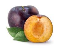 Prunes d'isolement La totalité et une moitié de prune bleue portent des fruits avec des feuilles d'isolement sur le fond blanc, a Photo libre de droits