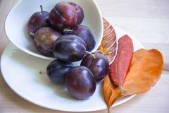 Prunes dans la cuvette du plat blanc, avec les feuilles peintes Photographie stock libre de droits