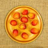 Prunes de plat Image stock