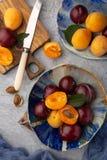 Prunes et abricots juteux m?rs de coupe photos stock