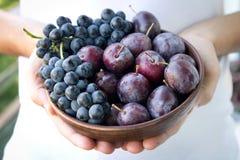 Prunes et raisins frais Photos libres de droits
