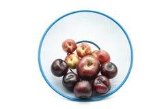 Prunes foncées avec des nectarines Photographie stock