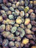 Prunes fraîches au marché Image stock