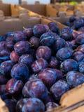 Prunes fraîches au marché Image libre de droits