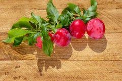 Prunes fraîches sur la table en bois photographie stock