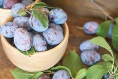 Prunes fraîches sur la table en bois Images stock