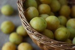 Prunes jaunes Images stock